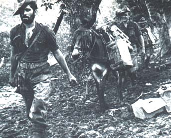 Wingate's Chindits in the jungle